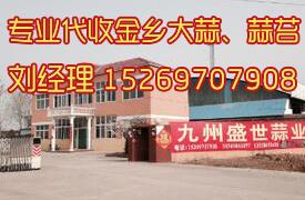 2014中国大蒜网_推荐经纪人